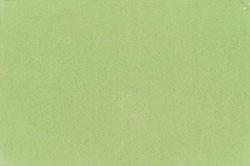 61 pistachio